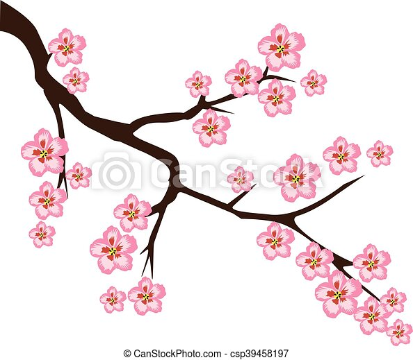cherry flower vector cherry blossom branch eps vectors search rh canstockphoto com cherry blossom clipart cherry blossom clip art free to download