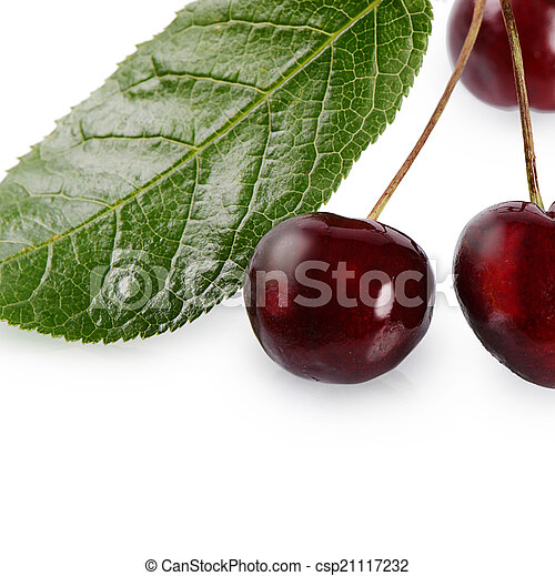 Cherry on the branch with leaves - csp21117232