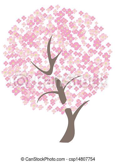 cherry tree - csp14807754