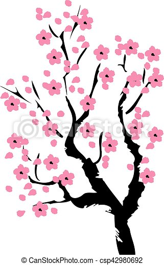 The Best Vector Cherry Blossom Illustration Images