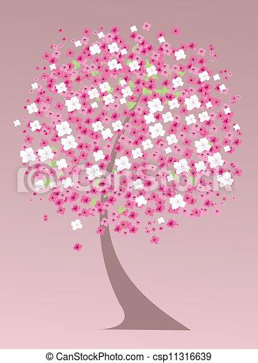 cherry tree - csp11316639