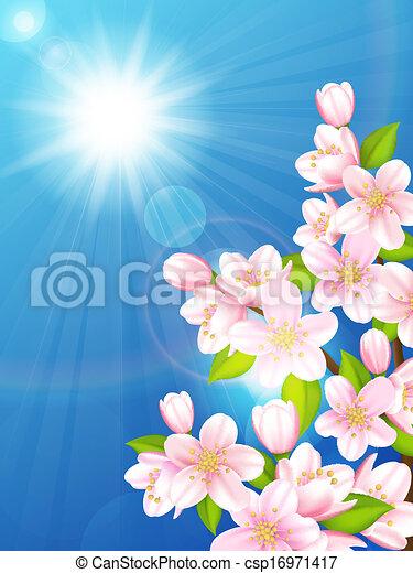 Cherry tree - csp16971417