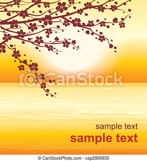 cherry twigs in bloom - csp2905630