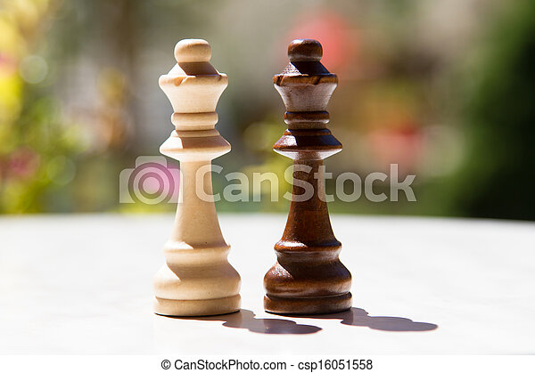 Chess Pieces on Table - csp16051558
