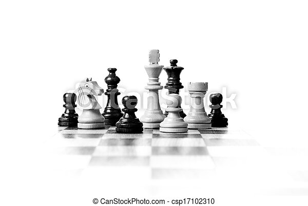 chess pieces on the board - csp17102310