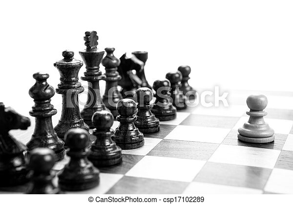 chess pieces on the board - csp17102289