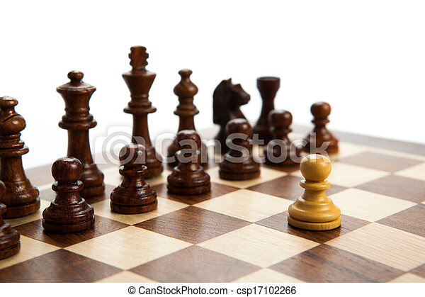 chess pieces on the board - csp17102266