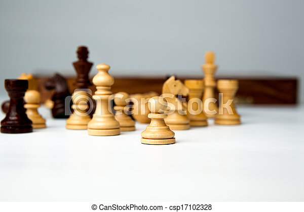 chess pieces on the board - csp17102328