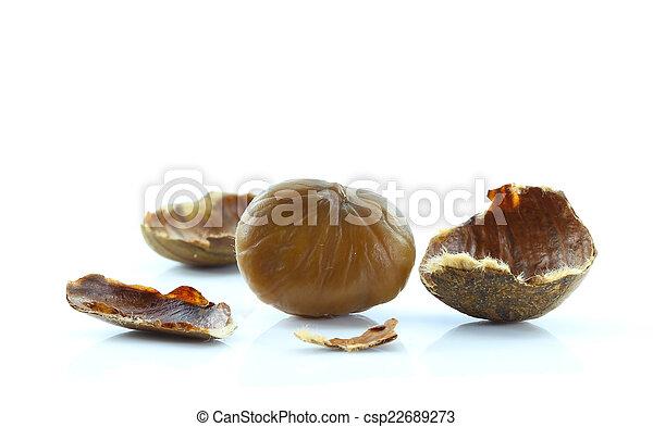 Chestnut on white background. - csp22689273