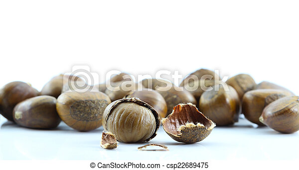 Chestnut on white background. - csp22689475