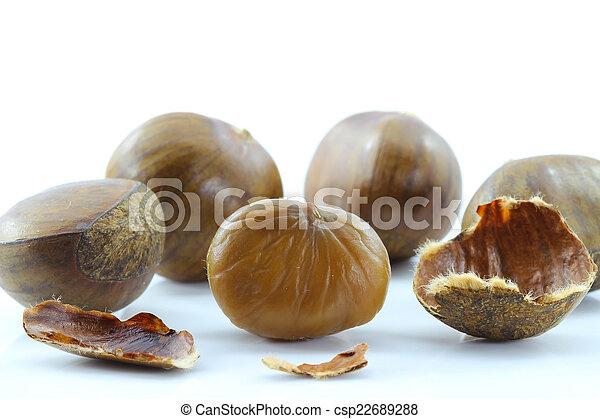 Chestnut on white background. - csp22689288