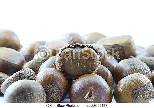Chestnut on white background. - csp22689487