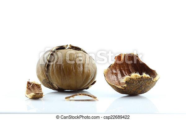 Chestnut on white background. - csp22689422