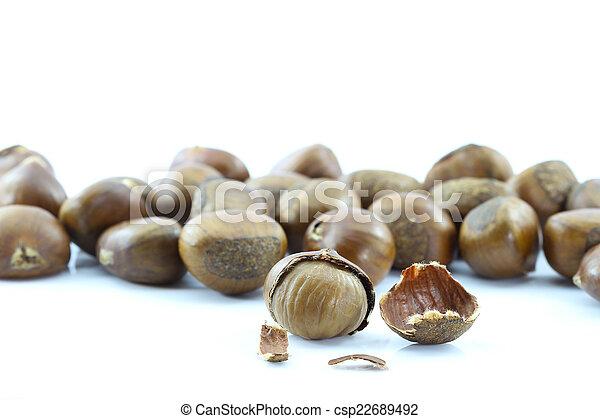Chestnut on white background. - csp22689492