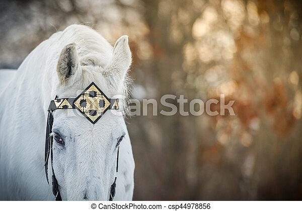 cheval, extérieur, moyen-âge, trotteur, haut,
