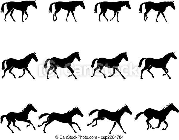 Cheval gaits engendr naturel troisi me galop row - Comment dessiner un cheval au galop ...