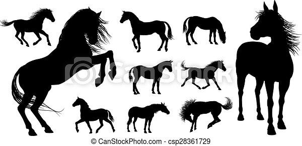 cheval, silhouettes - csp28361729