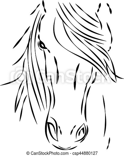 Cheval t te fond blanc cheval illustration t te arri re plan vecteur blanc - Image tete de cheval ...