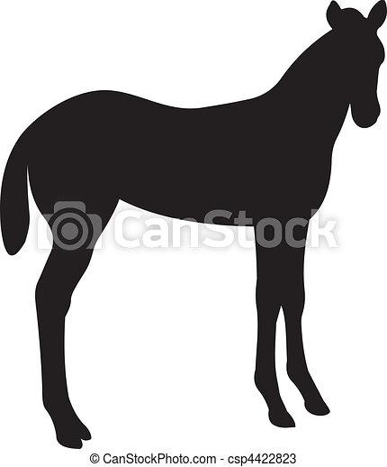 cheval, vecteur - csp4422823