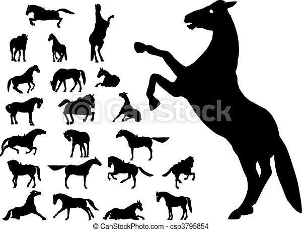 image cheval vectoriel