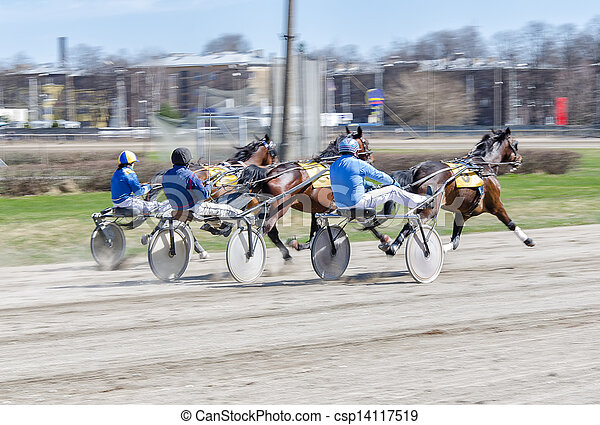 chevaux, strollers., harnessed, racing., harnais, léger, courses - csp14117519