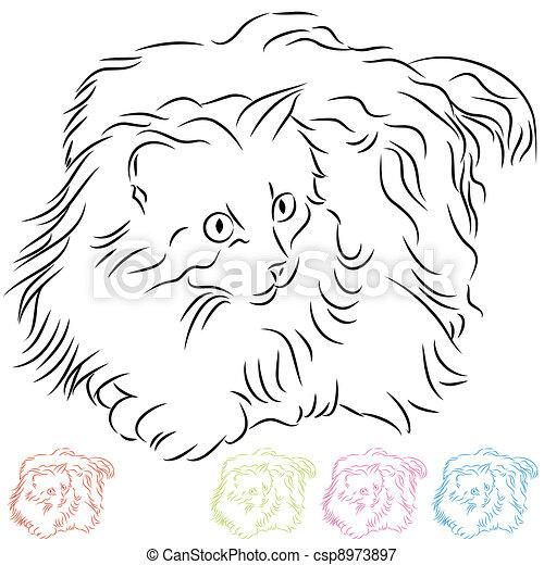 chevelure, long, chat ragdoll - csp8973897