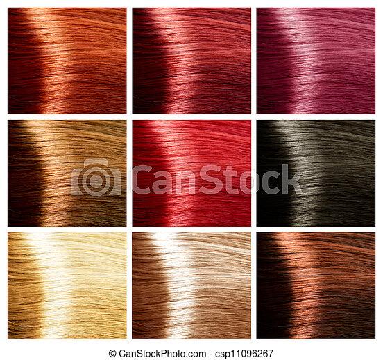 Cheveux Couleurs Palette