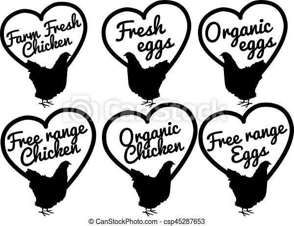 Chicken And Eggs Farm Fresh And Free Range Slection Of Vector