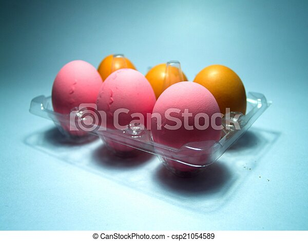 chicken egg  - csp21054589