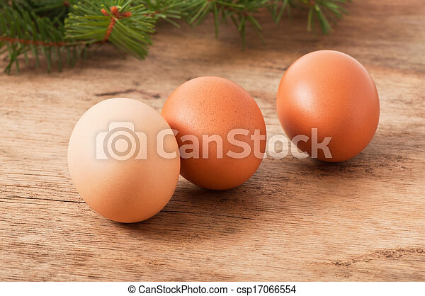 chicken egg - csp17066554