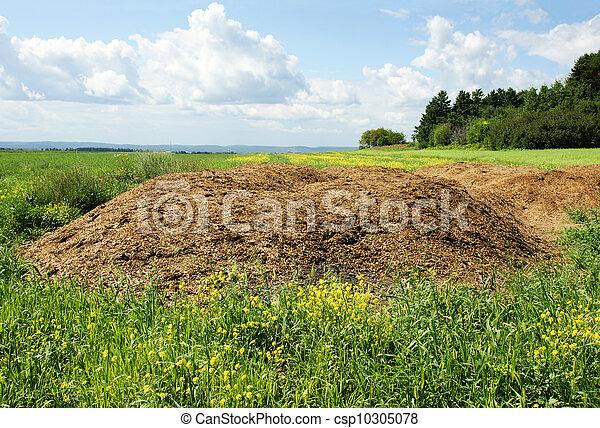 Chicken manure heap - csp10305078