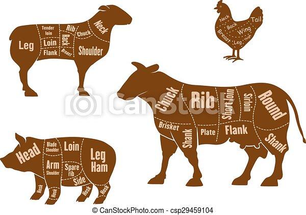 Chicken, pork, beef and lamb meat cuts scheme - csp29459104