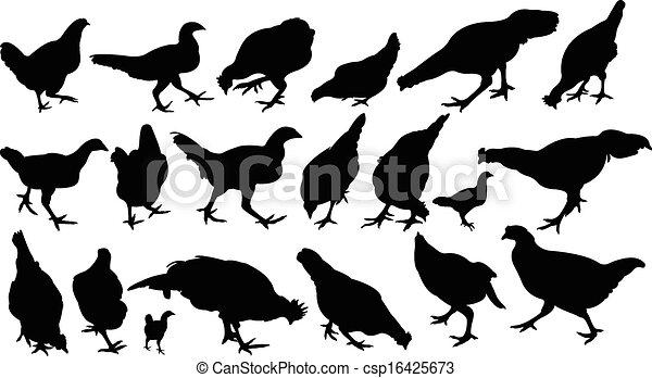 chicken silhouette vector set - csp16425673