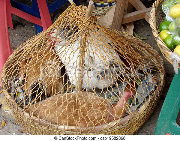 chickens for sale in street market - csp19582868