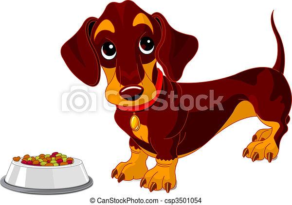 chien basset allemand - csp3501054