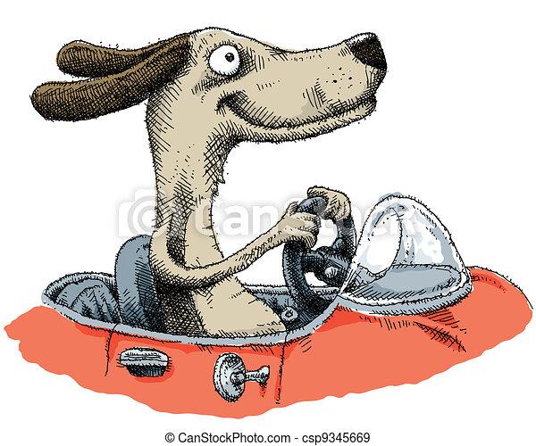 chien, conduite - csp9345669