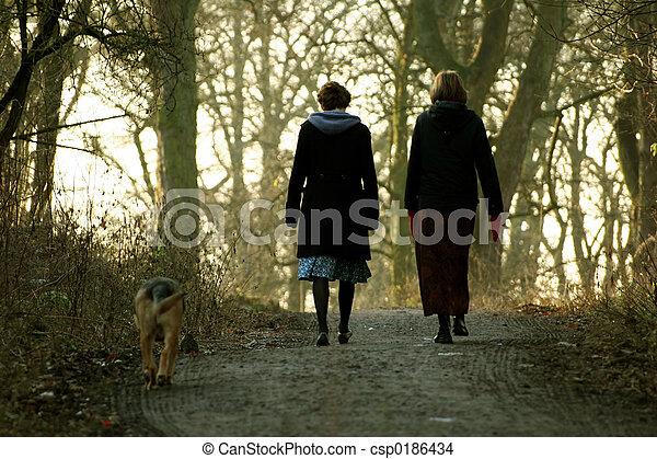 chien marche, femmes - csp0186434