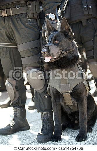 chien policier - csp14754766
