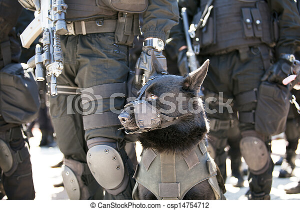 chien policier - csp14754712