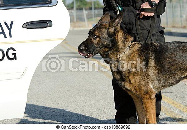 chien policier - csp13889692