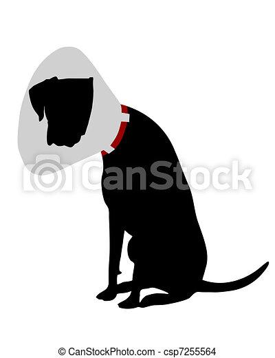 chien, ruff - csp7255564