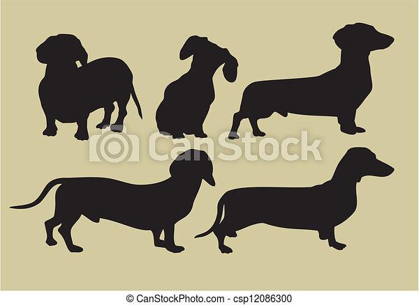 chiens - csp12086300