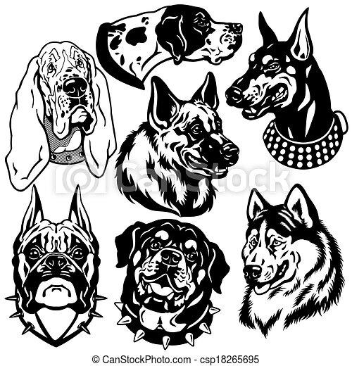 chiens, icônes, têtes, ensemble - csp18265695