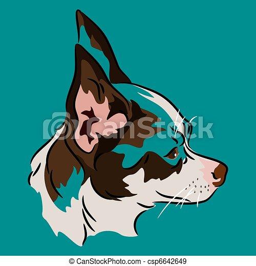 chihuahua face profile