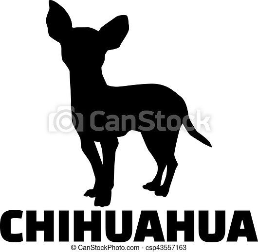 Chihuahua silhouette with breed name - csp43557163