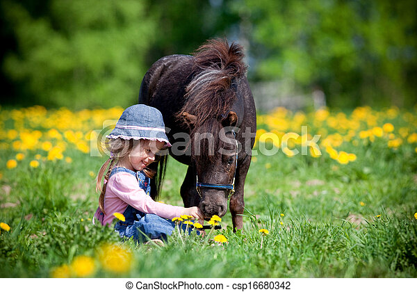 Child and small horse in field - csp16680342