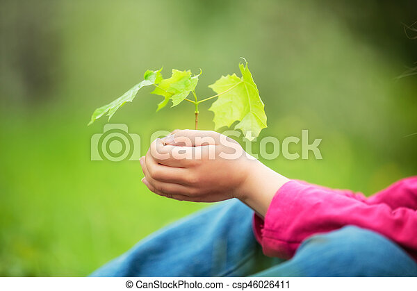 Child holding little green plant in hands - csp46026411