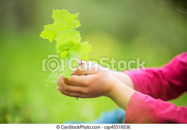 Child holding little green plant in hands - csp45316536