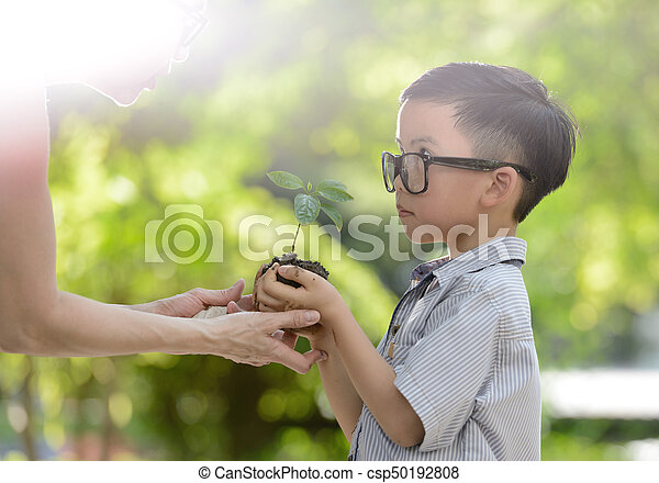 Child holding young plant in hands with a hope of good environment - csp50192808