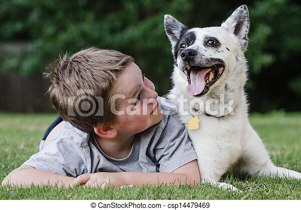 Child playing with his pet dog - csp14479469